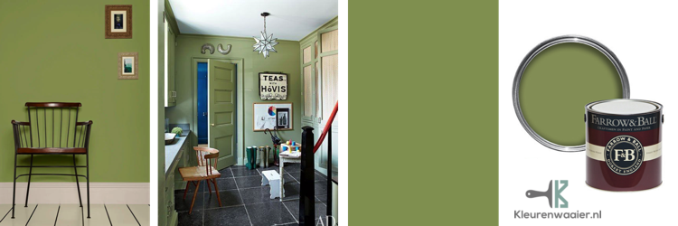 Farrow and Ball olive 13