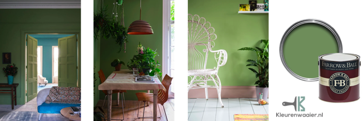 farrow and ball breakfast room green 81