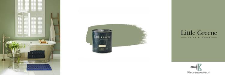 little greene boringdon 295