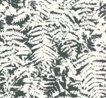 Little Greene Fern Off Black