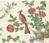 Little Greene Darwin Provence